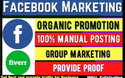 I will do organic Facebook marketing and promote your business ads