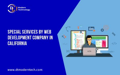 Special services by our web development company in California