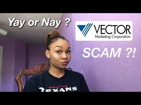 What is Vector Marketing?